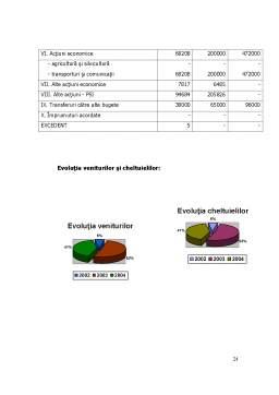 Proiect - Organizarea si Conducerea Gestiunii la Primaria Filipesti - Bacau