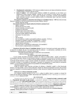 Referat - Metodologia de Derulare a Misiunii de Audit Intern și Valorificarea Rezultatelor