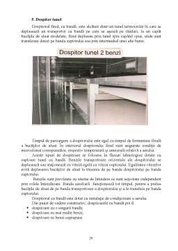 Proiect - Tehnologia si Controlul Calitatii in Industria Produselor Fainoase - Painea Rotunda