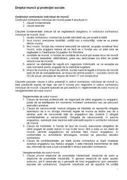 Curs - Dreptul Muncii și Protecției Sociale