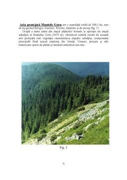 Proiect - Agroturism - Descrierea unei Pensiuni