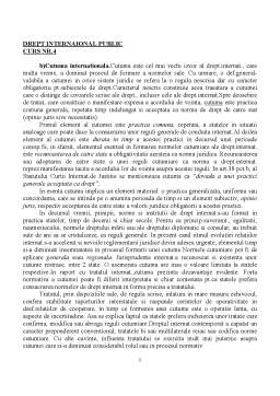 Curs - Drept International Public - Curs 4