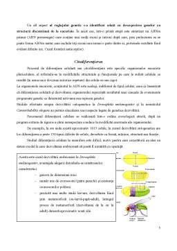 Curs - Reglarea Exprimării Genelor la Eucariote