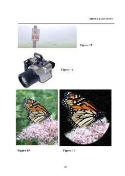 Curs - Arta si Tehnica Fotografica