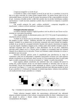 Referat - Prelucrarea Numerica a Imaginilor