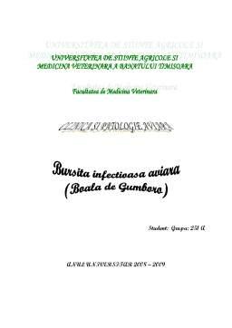 Referat - Bursita Infectioasa Aviara - Boala de Gumboro