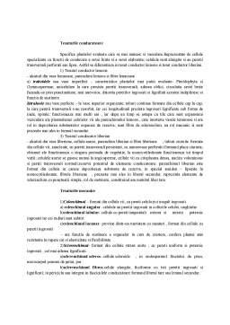 Referat - Clasificarea Tesuturilor Vegetale dupa Forma si Grad de Diferentiere Celulara