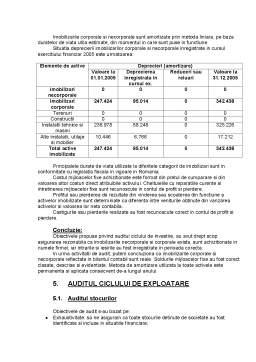 Proiect - Raportul de Audit cu Privire la Situatiile Financiare pentru Exercitiul Incheiat la 31 Decembrie 2005