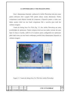 Licență - Exploatare si Deservirea Calculatoarelor - Crearea de Imagini Animate pentru Web Utilizand Adobe Photoshop