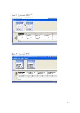 Referat - Baze de Date în Access
