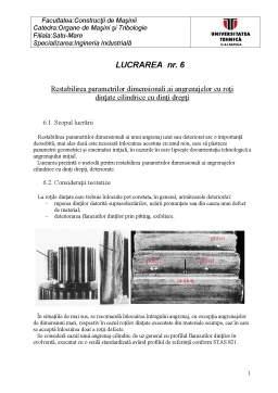 Laborator - Restabilirea Parametrilor Dimensionali ai Angrenajelor cu Roți Dințate Cilindrice cu Dinți Drepți