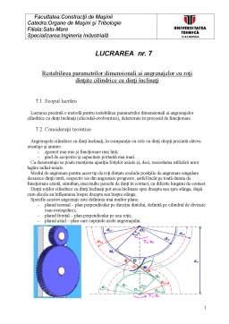 Laborator - Restabilirea Parametrilor Dimensionali ai Angrenajelor cu Roți Dințate Cilindrice cu Dinți Înclinați