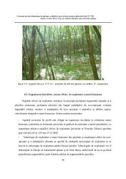 Proiect - Cercetari Privind Tehnologia de Aplicare a Taierilor Rase in Benzi pentru Arboretele din UP VIII Baciu, Ocolul Silvic Cluj, in Vederea Obtinerii unei Structuri Optime