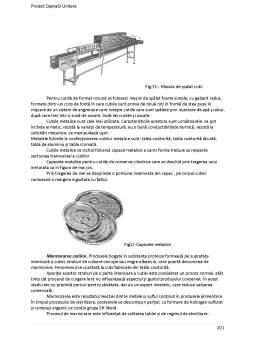 Proiect - Tehnologia Fabricarii Pateului din Ficat de Porc