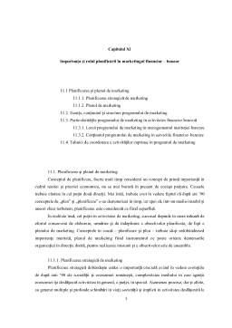 Curs - Importanta si Rolul Planificarii in Marketingul Financiar-Bancar