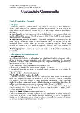 Proiect - Contractele Comerciale