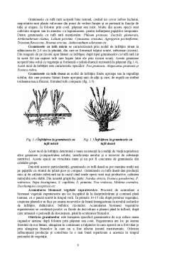 Curs - Producerea și Conservarea Furajelor