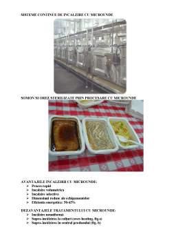 Curs - Tehnologii Moderne de Asigurare a Calitatii si Stabilitatii Produselor Alimentare