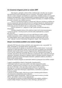 Referat - Auditul Aplicatiilor ERP