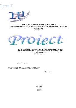 Proiect - Organizarea Contabilității Importului de Mărfuri