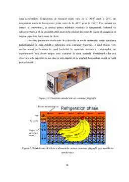 Proiect - Transportul Containerizat
