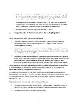 Referat - Standardul 25 - Auditul Intern