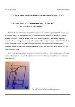 Referat - Profile Metalice Laminate la Rece