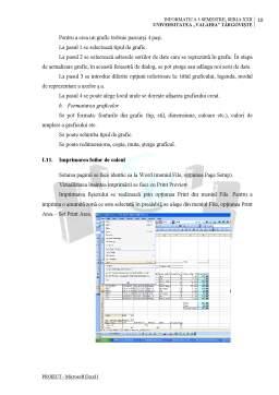 Proiect - Pachete de Aplicatii pentru PC-uri - Proiect Excel