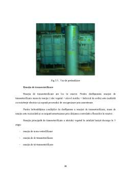 Licență - Aspecte de Mediu la o Instalatie de Producere a Biodieselului