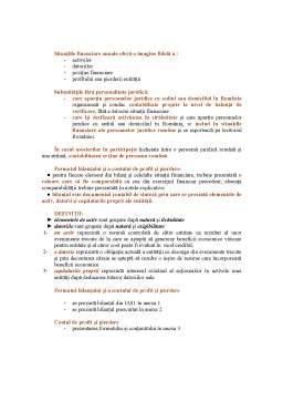 Curs - Sinteza Privind Reglementarile Contabile Conforme cu Directivele Europene