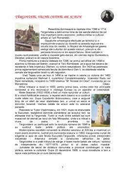 Proiect - Primaria Targoviste - Proiect Practica