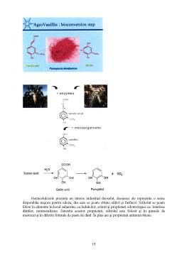Referat - Tipuri de Materiale Obtinute din Substraturi Lignocelulozice