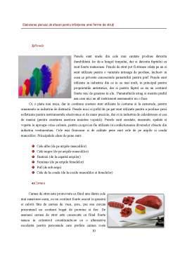 Proiect - Elaborarea Planului de Afaceri pentru Infiintarea unei Firme de Struti