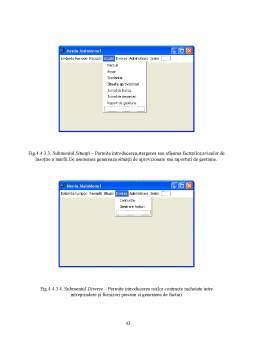 Proiect - Proiectarea Sistemului Informatic Privind Evidenta Furnizorilor la SC Cristian Andronic SRL