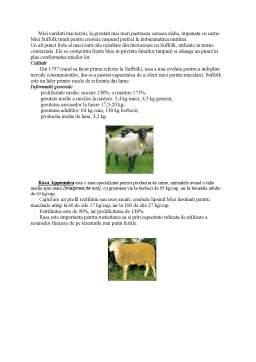 Proiect - Tehnologia Obtinerii si Procesarii Produselor de Origine Animala