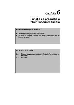 Curs - Economia Firmei Curs 6