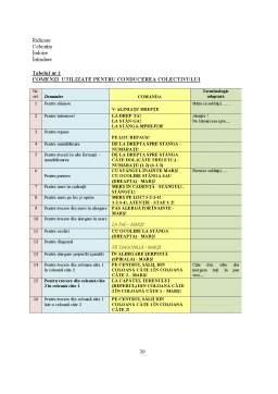 Proiect - Programul de Stimulare Psihomotrica, Mijloc de Educare a Componentelor Psihomotrice a Prescolarilor