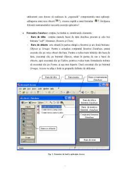 Curs - Abordare Aplicativa - Sistemul de Gestiune al Bazelor de Date Microsoft Access 2000