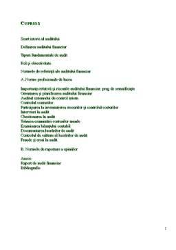 Proiect - Auditul Financiar - Raport de Audit Financiar