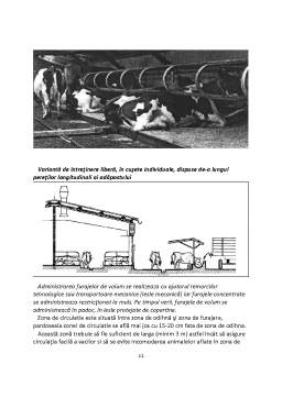 Proiect - Infiintarea unei Ferme de Vaci de Rasa Bruna, Cu un Efectiv de 45 de Capete, Intretinere Libera