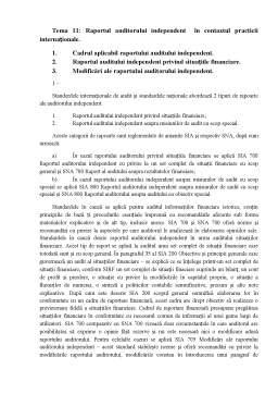 Curs - Raportul Auditorului Independent in Contextul Practicii Internationale