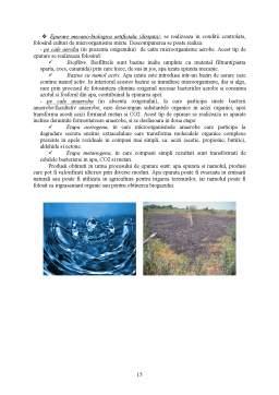 Proiect - Reciclarea Deseurilor din Industria Alimentara