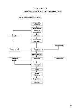 Proiect - Aspecte Tehnologice privind Obținerea Salamului Victoria