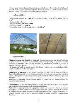 Proiect - Constructii Agricole - Crescatorie de Ciuperci