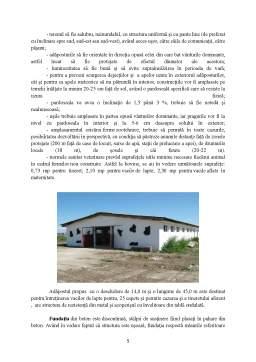 Proiect - Ferma Vaci de Lapte, Rasa Baltata Romaneasca cu un Efectiv Matca 20 de Capete