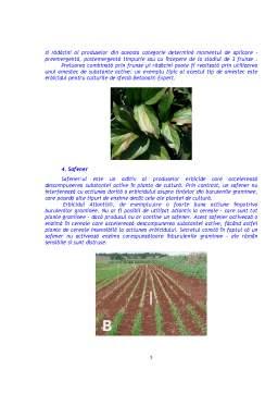 Referat - Actiunea Erbicidelor in Plante si Influenta asupra Proceselor Metabolice