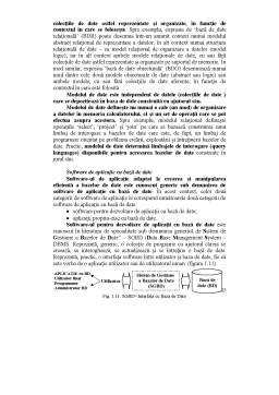 Curs - Sinteza Sisteme Informatice Contabile Comparate