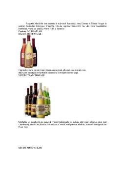 Proiect - Analiza Piata Vinurilor