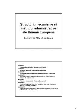 Curs - Structuri, Mecanisme si Institutii Administrative ale Uniunii Europene
