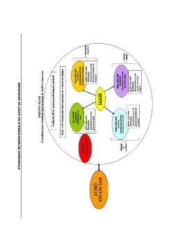 Curs - Standarde de Audit și Asigurare